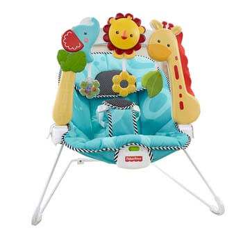 10. Fisher-Price Bouncer: 2-in-1 Sensory Stages