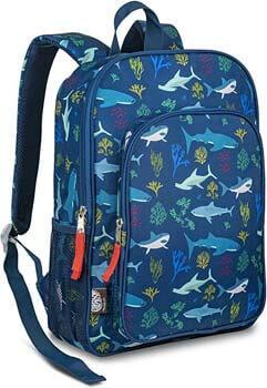 7. LONECONE Kids School Backpack for Boys & Girls - Sized for Kindergarten, Preschool