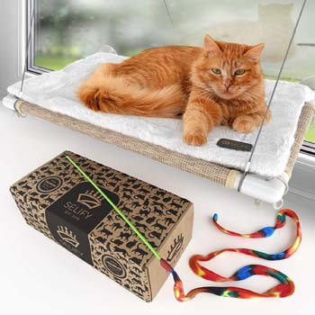 1. Cat Window Hammock