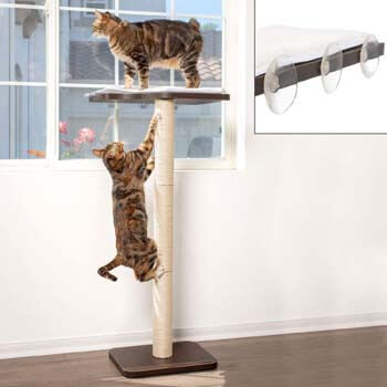 9. PetFusion Ultimate Cat Window Climbing Perch
