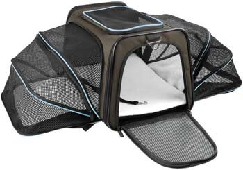 1. X-ZONE PET Airline Approved Pet Carriers, Soft-Sided Collapsible Pet Travel Carrier for Medium Cats and Puppy